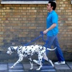 dog walking London pet care with CDPOM