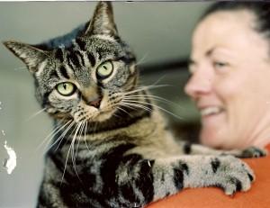 cat sitting London with CDPOM