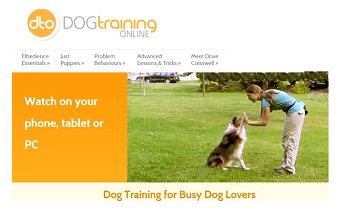 dog training for busy dog lovers