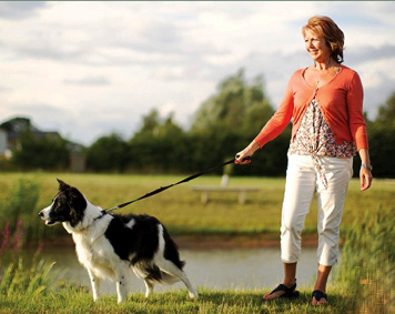 Pet friendly holidays are offered by Leisure Group